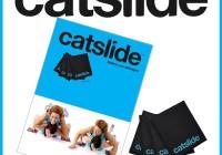 Catslide uddannelse Level Fys (1 dag)